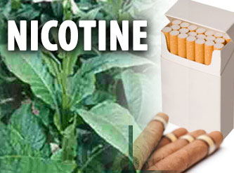 Nicotine medication